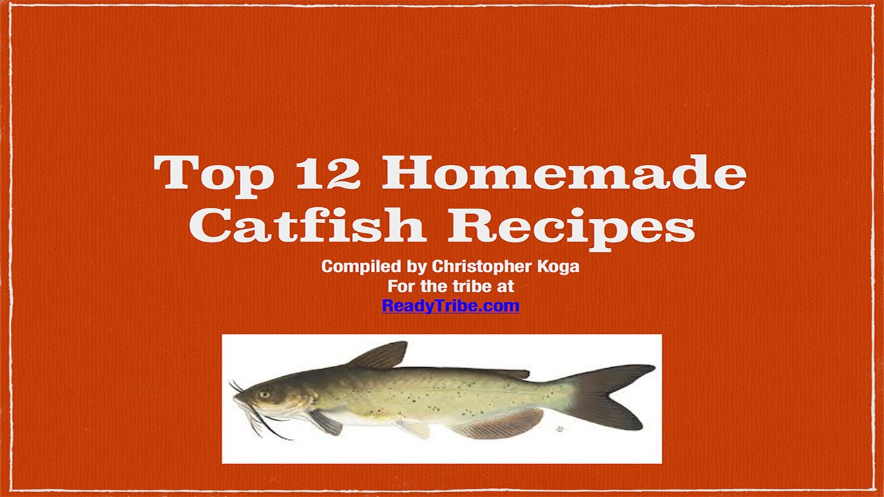 Catfish bait recipes homemade