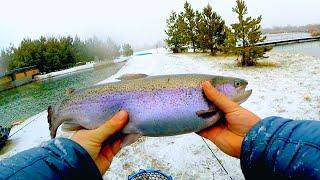 Ловля крупной форели зимой на сверхлёгкий спиннинг! Эти ряхи гнут спиннинг в дугу! Рыбалка 2020!
