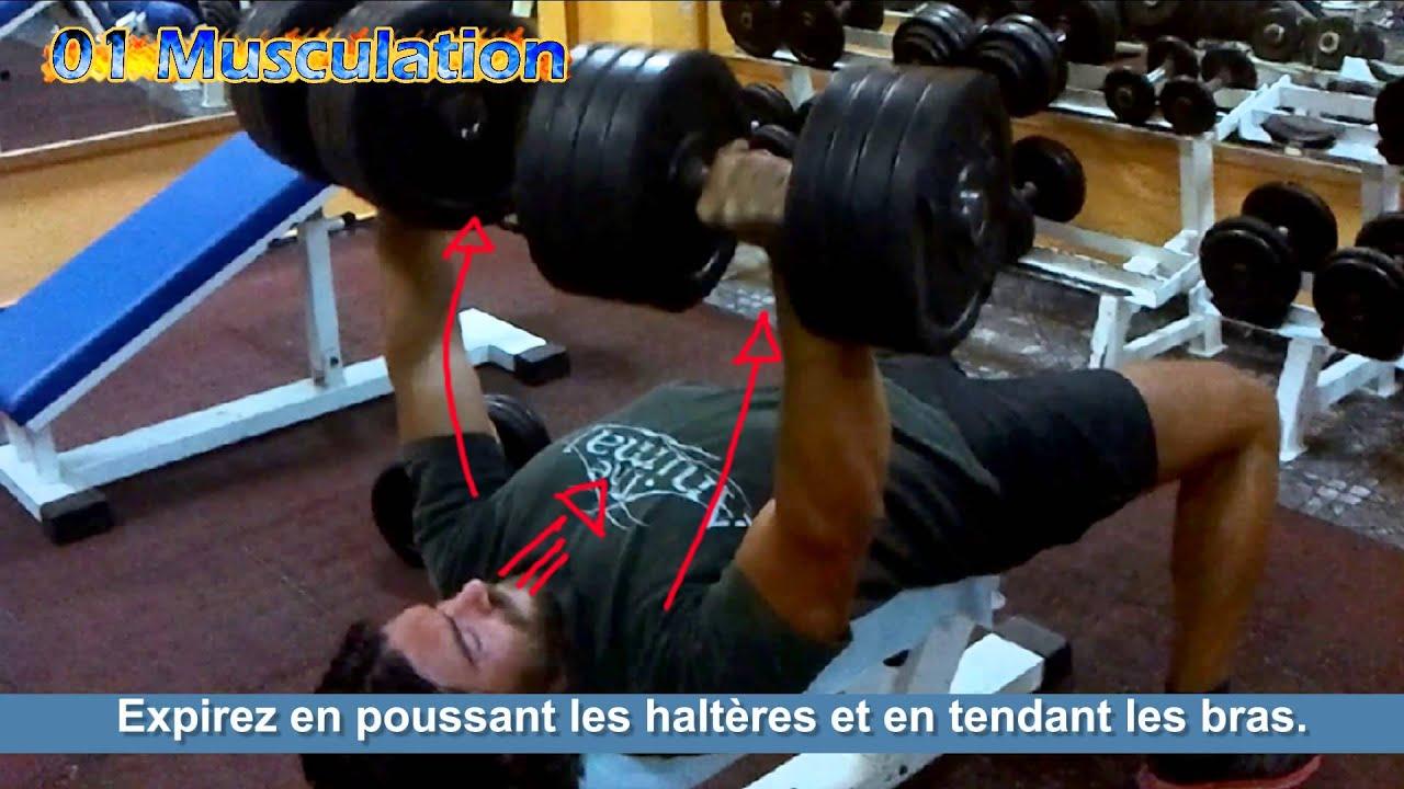 Muscler les pectoraux developp couch halt res youtube - Pectoraux developpe couche ...