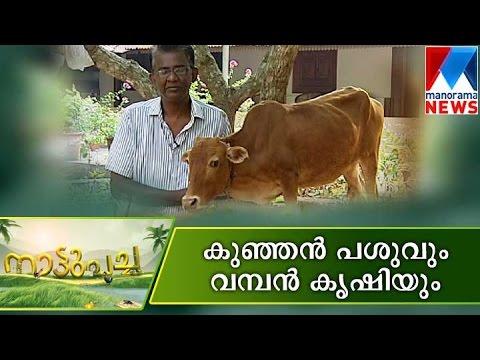 Nature farming for future | Manorama News | Nattupacha