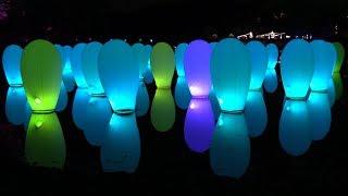 夜の湖畔照らす「森と湖の光の祭」 埼玉・飯能