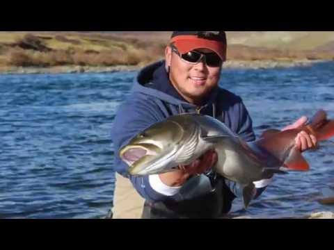 Fishing trip northern Mongolia. 2015