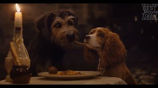 Lady and the Tramp Kiss Scene.  Mongrel in love Bella Notte