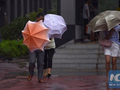 China typhoon Pakhar: 14th typhoon of year, lands in South China, several provinces affected