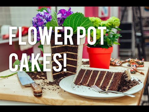 How to Make A FLOWER POT out of CAKE! Chocolate cake coffee buttercream and edible OREO dirt! - YouTube & How to Make A FLOWER POT out of CAKE! Chocolate cake coffee ...