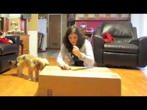 Dog Crate UNBOXING
