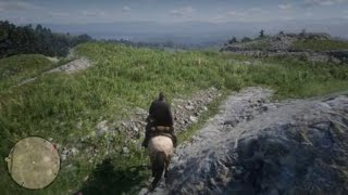 Red Dead Redemption 2_20190122173519