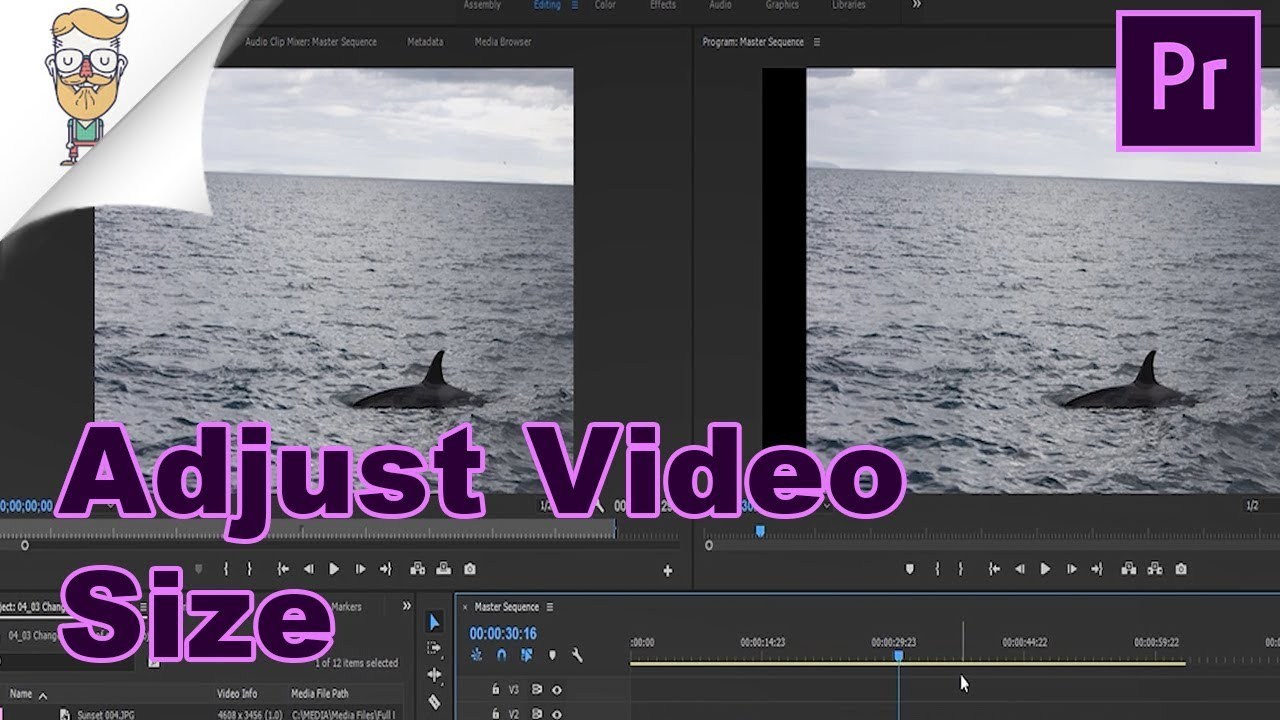 How To Change Video Size In Premiere Pro - YouTube