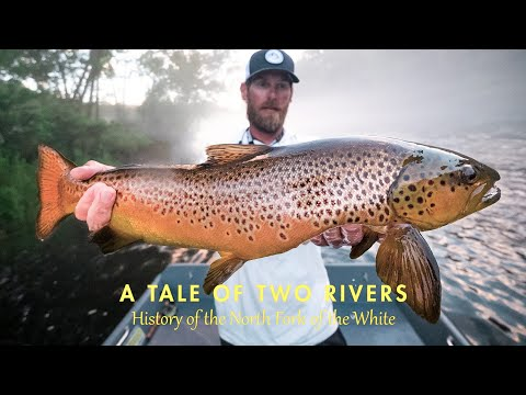 Ozarks On The Fly | VOL5 | BIG BROWN TROUT On The NORFORK RIVER