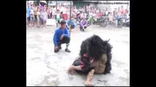 Download Video Kesurupan masal, pawang kewalahan - Seni Kuda Renggong Dan Benjang Cinangka Ujung Berung Bandung MP3 3GP MP4