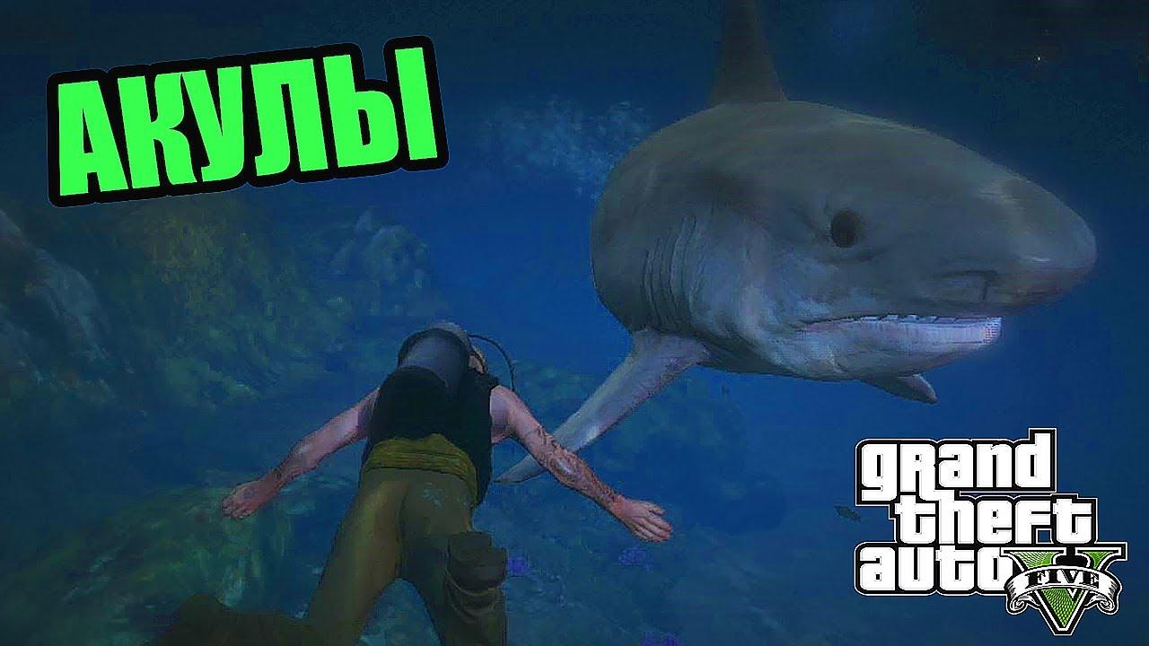 Скачать игру охота на акул на компьютер