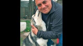 Девочке из Копейска подарили щенка хаски от имени Владимира Путина