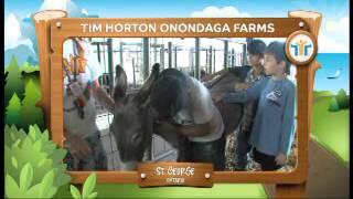 TIM HORTON ONONDAGA FARMS ST GEORGE ONTARIO Thumbnail