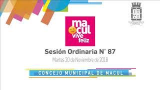 Copia de Comisión de Salud y Concejo Municipal de Macul N° 87 / 20-11-2018