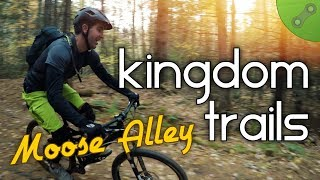 THE MOOSE IS LOOSE | Moose Alley Kingdom Trails :: East Burke, VT