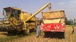 How to separate Wheat grains with Latest Machinery in Pakistan | Gandum ki Safai