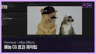 [프리미어 프로] 현직 모션 그래픽 디자이너가 알려주는 예능 CG 효과 제작팁