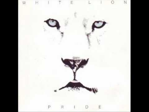 White Lion - Hungry