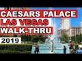 CAESARS PALACE Hotel and Casino [4k] 🏛🏛🏛 walkthrough Las ...
