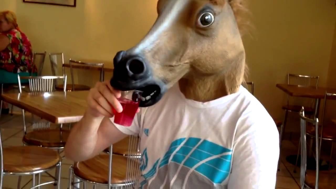 Картинки по запросу голова коня