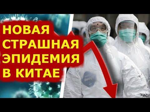 Китайский вирус последние новости  Коронавирус данные на 4 февраля 2020г
