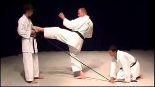 Mae Geri Front Kick Shotokan Karate Exercise