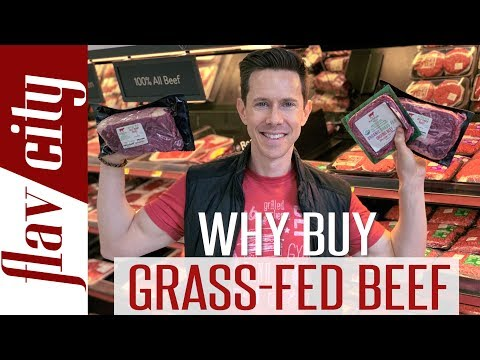 Grass Fed Beef - Everything You Need To Know And Where To Buy It