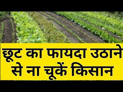 Subsidy for farmers