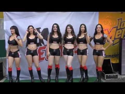 Arranca la Liga Mexicana del Pacífico 2015 2016 en el Emilio Ibarra