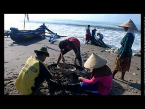 Nelayan Pangandaran - Iwan Fals