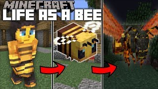 Minecraft LIFE AS A BEE WITH HONEY / FIND OUT WHAT QUEEN BEE LIVES IN MINECRAFT !! Minecraft