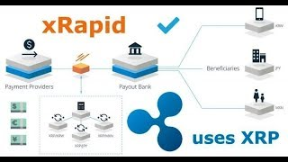 Ripple (XRP) - xRapid Goes Live with 3 Financial Institutions