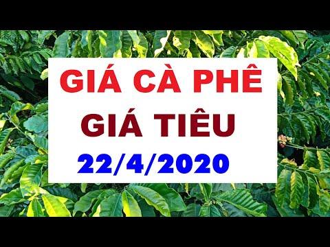 GIÁ CÀ PHÊ & GIÁ TIÊU ngày 22/4/2020|Giá tiêu tăng mạnh, giá cà phê sụt giảm