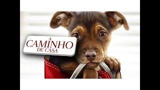 A CAMINHO DE CASA - 💓UM FILME MUITO FOFO E LINDO!💓 FILME COMPLETO (2019)