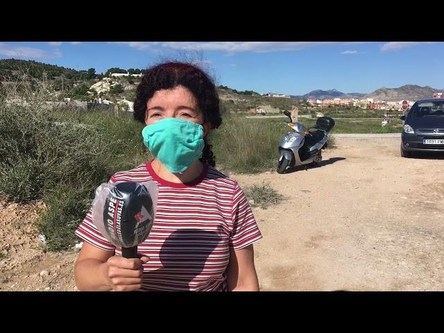 Limpieza de los Pinos Chavitos 2021 #Aspe