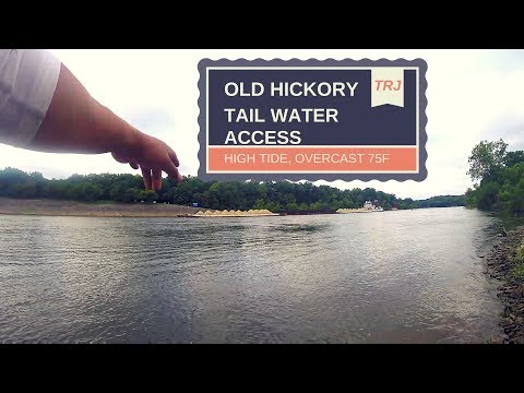 BONUS VIDEO!!- Fishing The Tailwater Of Old Hickory Dam
