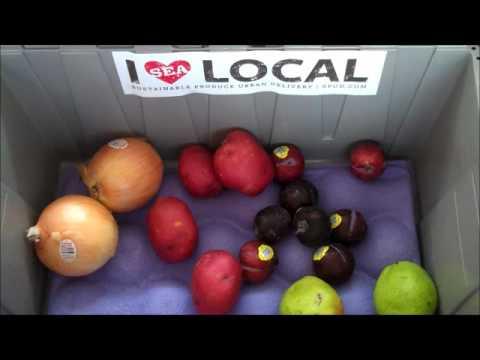 Seattle's Local organic produce box - Sept. 2nd