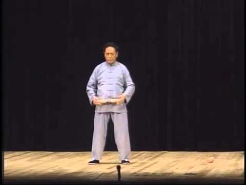 Chen Taichi Japan demo (2 of 4)