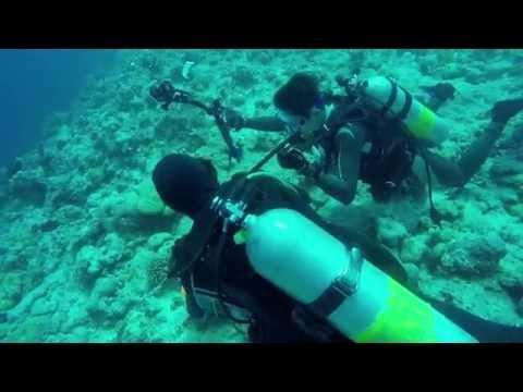 TR20150325 Palau