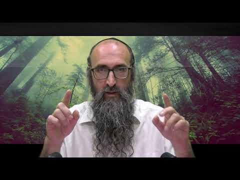 ON VA CHANGER LE MONDE 1 - Le secret de la benediction des fils - Rav Itshak Peretz