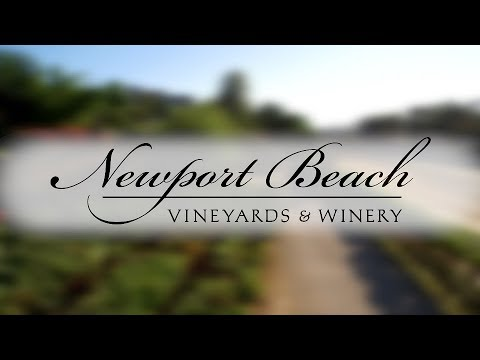 Newport Beach Vineyards Winery Tour