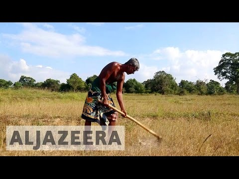 Severe drought hits Sri Lanka farmers