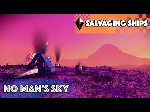 [No Man's Sky] Salvaging Ships Pathfinder (1.24)