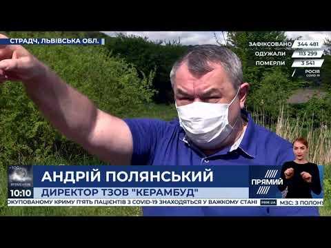 Брати депутатів ОПЗЖ вирубують заповідні ліси на Львівщині