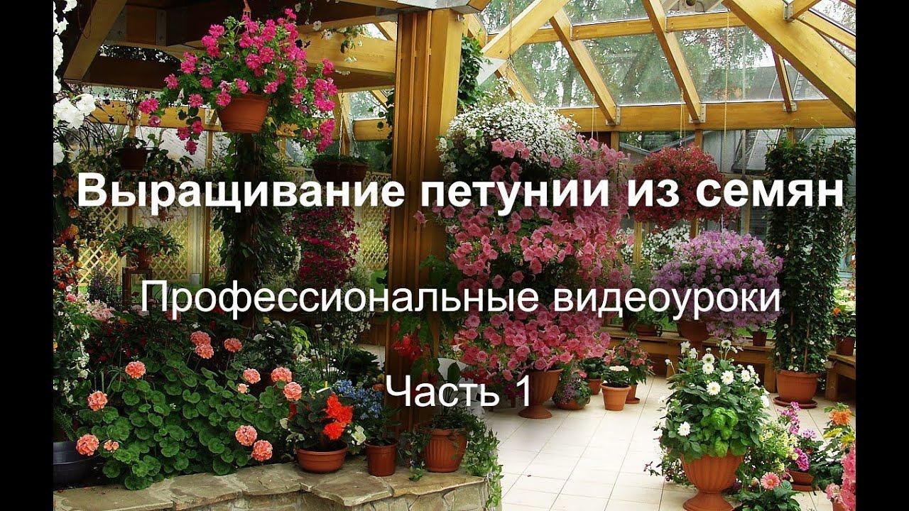 Для плодовых деревьев и ягодных кустарников.