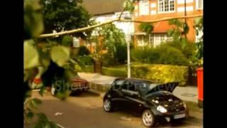 Ford Sportka Ad - Bird