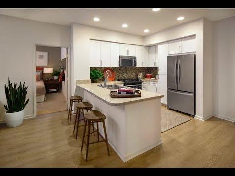 River View Apartment Rentals In San Jose