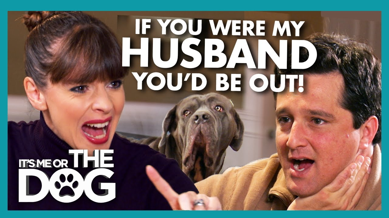 Victoria Confronts Owner Responsible for Filling Home with Dogs! | It's Me or the Dog