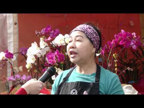Chợ hoa PHƯỚC LỘC THỌ - XUÂN 2016 Ở CALIFORNIA