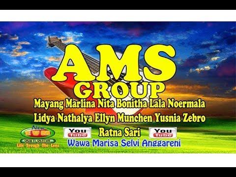 Live AMS GROUP